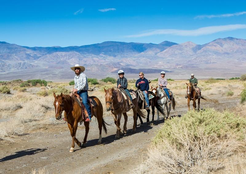 Horse Tour Gearminded.com