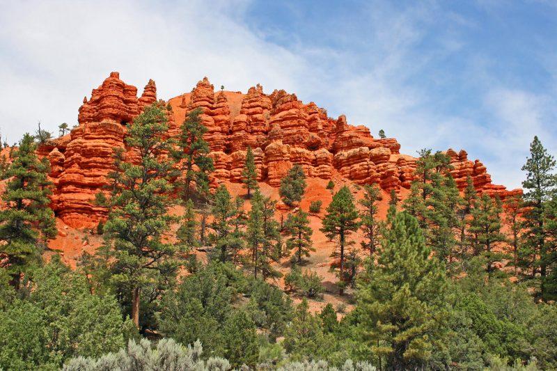 Red Canyon Campground Utah