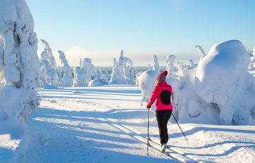 Snow shoe Europe