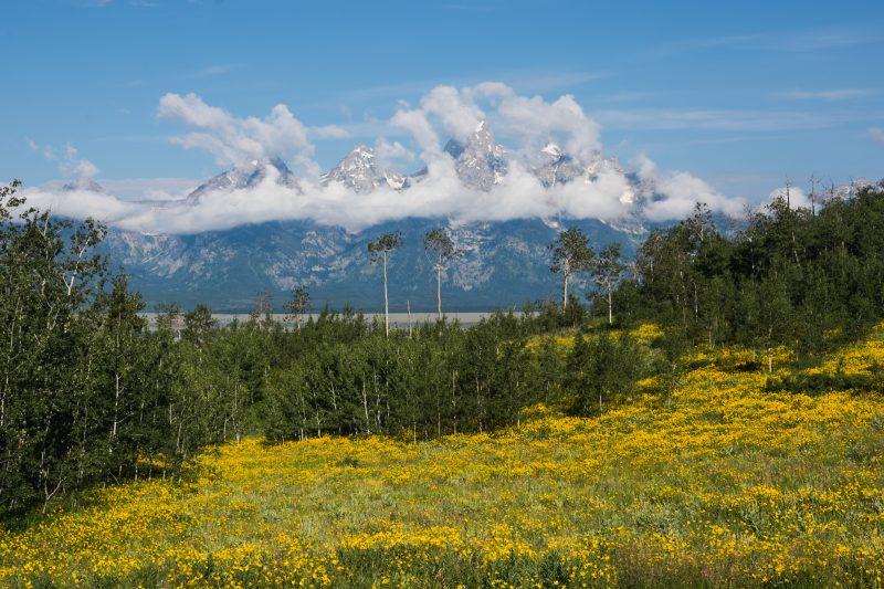 Grand Teton National Park Gearminded.com