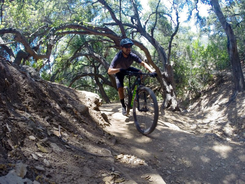 Niner Mountain Bike Review