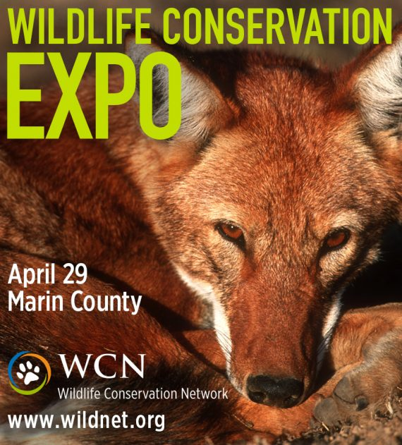 Wildlife Conservation Expo