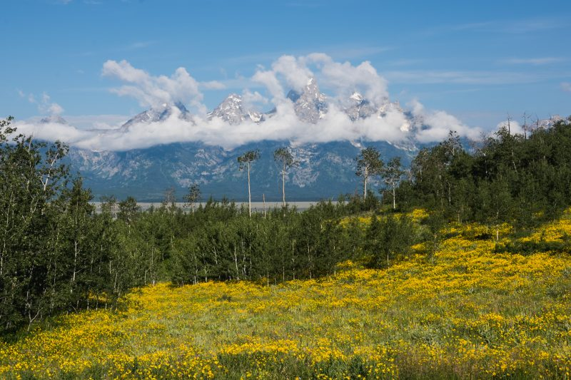 Grand Teton National Park Gearminded.com