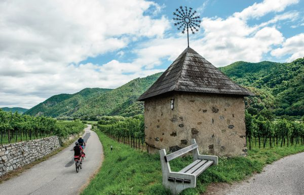 Cyclists ride past vineyards in the Wachau Valley, Austria on the Danube Bike Path or Donauradweg | Gearminded.com