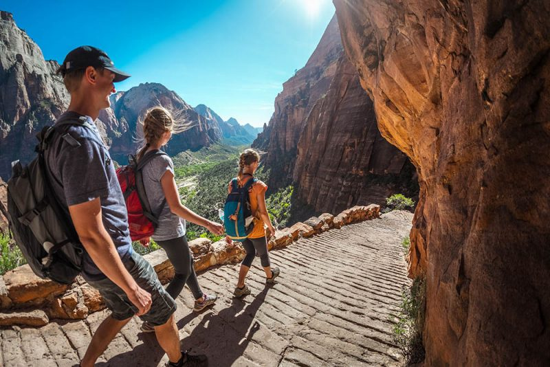 The hikers walking down a trail in Zion National Park on a sunny day.